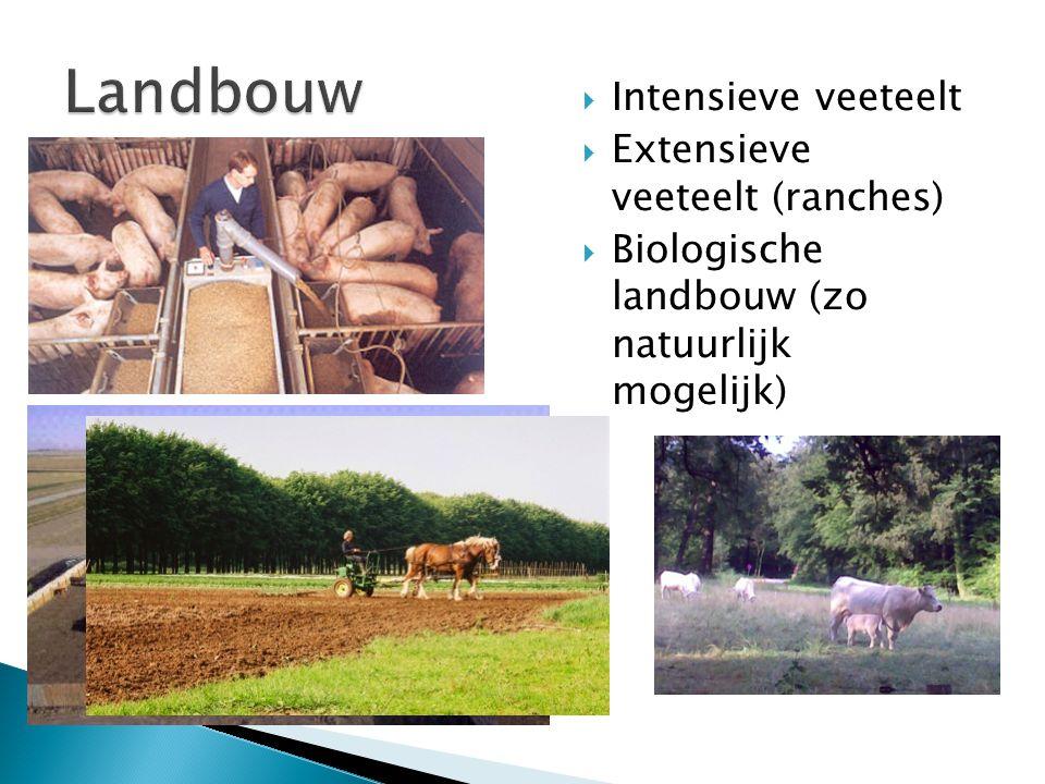 Landbouw Intensieve veeteelt Extensieve veeteelt (ranches)