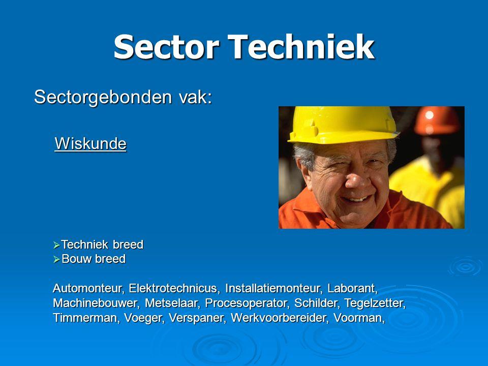 Sector Techniek Sectorgebonden vak: Wiskunde Techniek breed Bouw breed