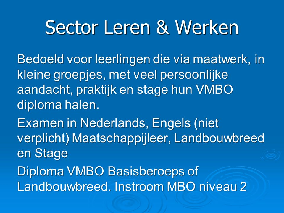 Sector Leren & Werken