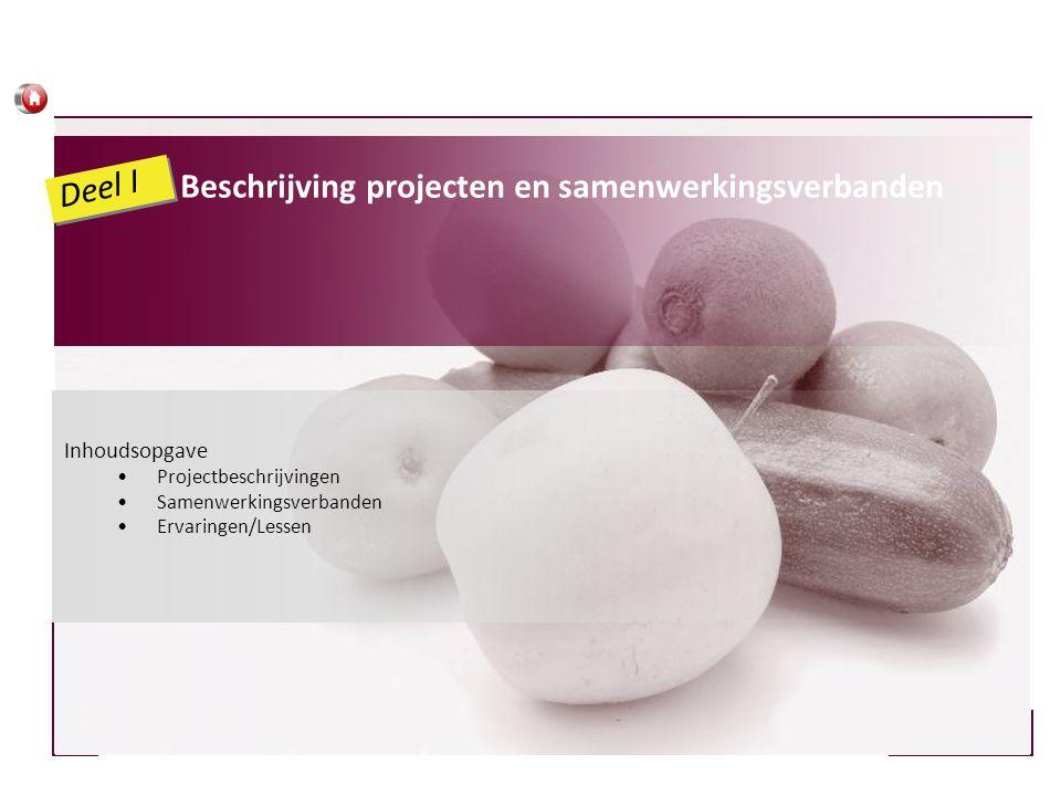 Beschrijving projecten en samenwerkingsverbanden Deel I