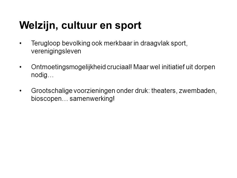 Welzijn, cultuur en sport