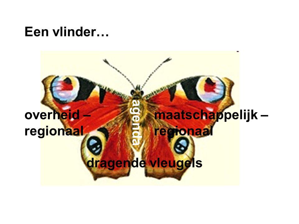 Een vlinder… overheid – regionaal maatschappelijk – regionaal