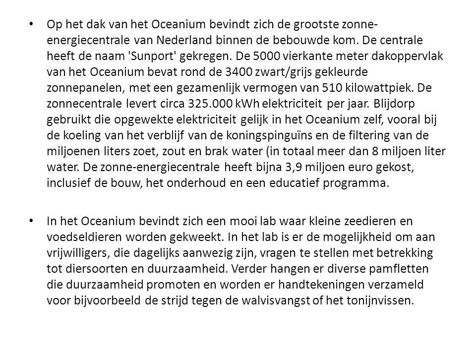 Op het dak van het Oceanium bevindt zich de grootste zonne-energiecentrale van Nederland binnen de bebouwde kom. De centrale heeft de naam Sunport gekregen. De 5000 vierkante meter dakoppervlak van het Oceanium bevat rond de 3400 zwart/grijs gekleurde zonnepanelen, met een gezamenlijk vermogen van 510 kilowattpiek. De zonnecentrale levert circa 325.000 kWh elektriciteit per jaar. Blijdorp gebruikt die opgewekte elektriciteit gelijk in het Oceanium zelf, vooral bij de koeling van het verblijf van de koningspinguïns en de filtering van de miljoenen liters zoet, zout en brak water (in totaal meer dan 8 miljoen liter water. De zonne-energiecentrale heeft bijna 3,9 miljoen euro gekost, inclusief de bouw, het onderhoud en een educatief programma.