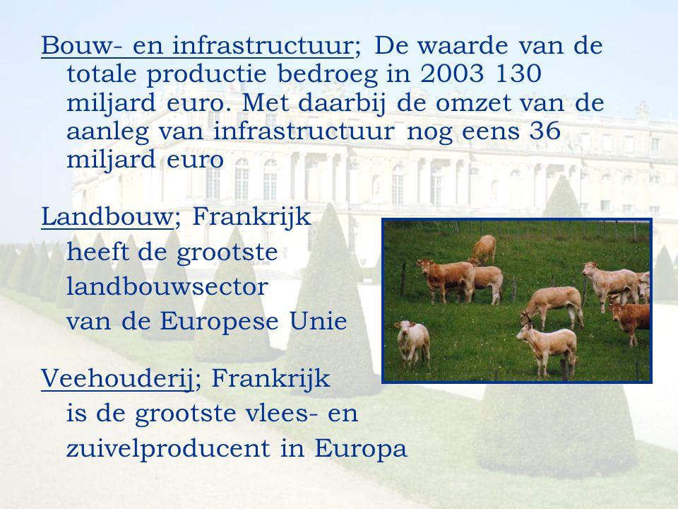 Bouw- en infrastructuur; De waarde van de totale productie bedroeg in 2003 130 miljard euro. Met daarbij de omzet van de aanleg van infrastructuur nog eens 36 miljard euro