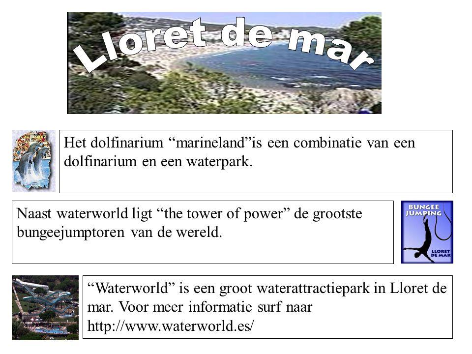 Lloret de mar Het dolfinarium marineland is een combinatie van een dolfinarium en een waterpark.