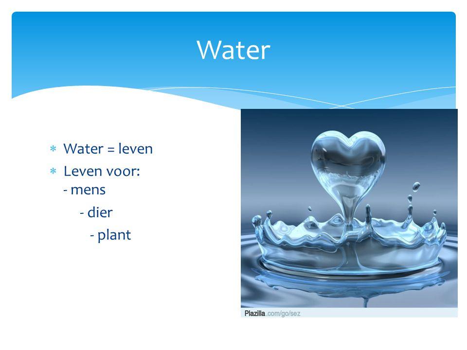 Water Water = leven Leven voor: - mens - dier - plant