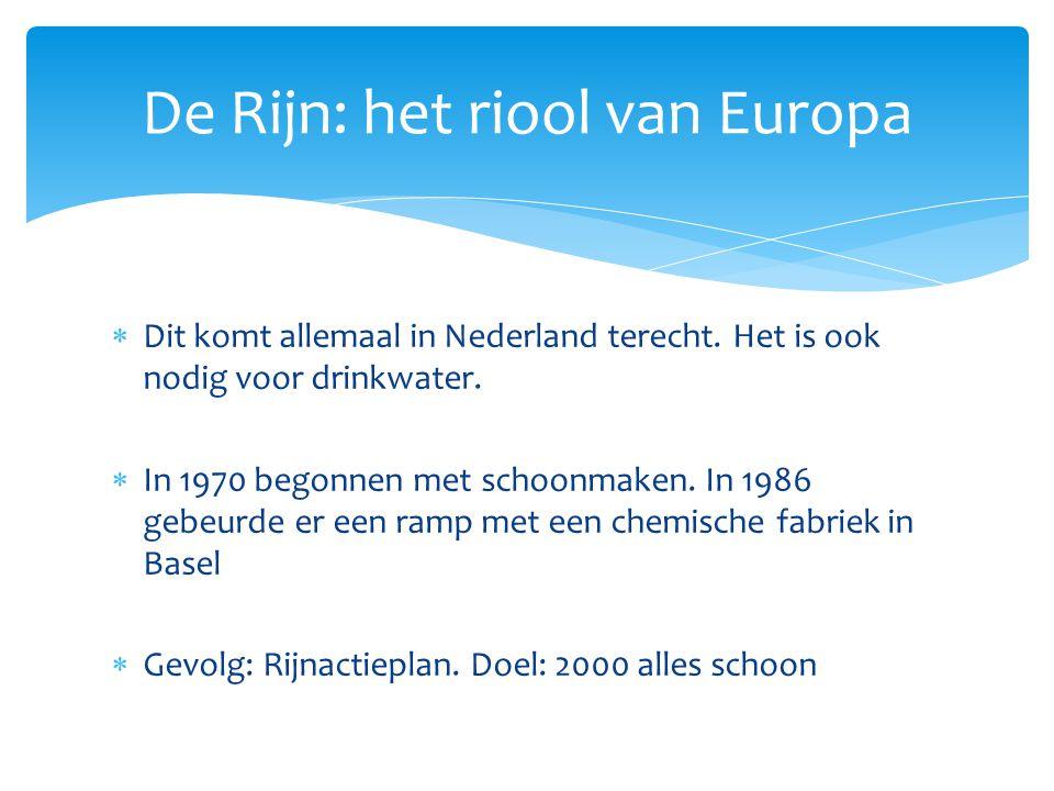 De Rijn: het riool van Europa