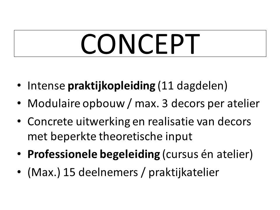 CONCEPT Intense praktijkopleiding (11 dagdelen)