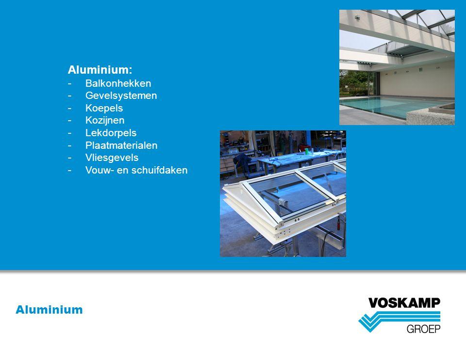 Aluminium: Aluminium Balkonhekken Gevelsystemen Koepels Kozijnen