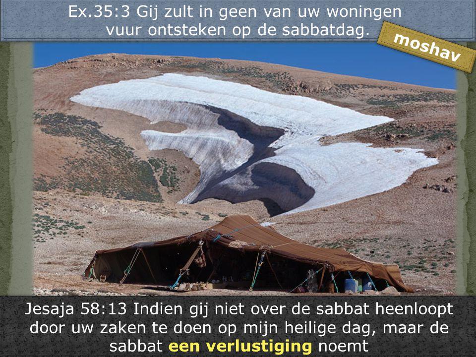 Ex.35:3 Gij zult in geen van uw woningen