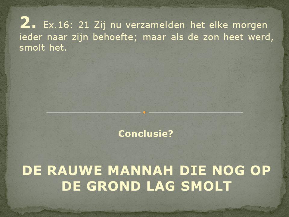 DE RAUWE MANNAH DIE NOG OP DE GROND LAG SMOLT