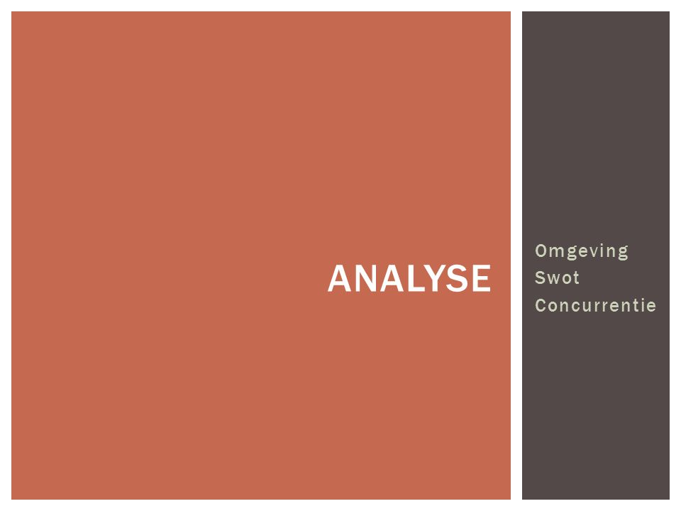 analyse Omgeving Swot Concurrentie