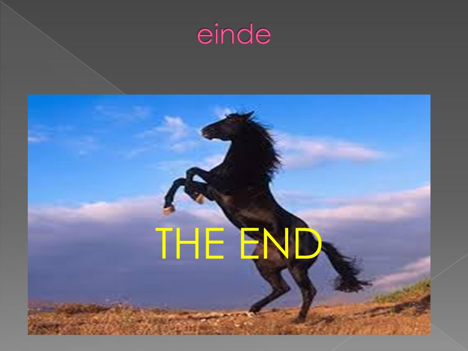 einde THE END