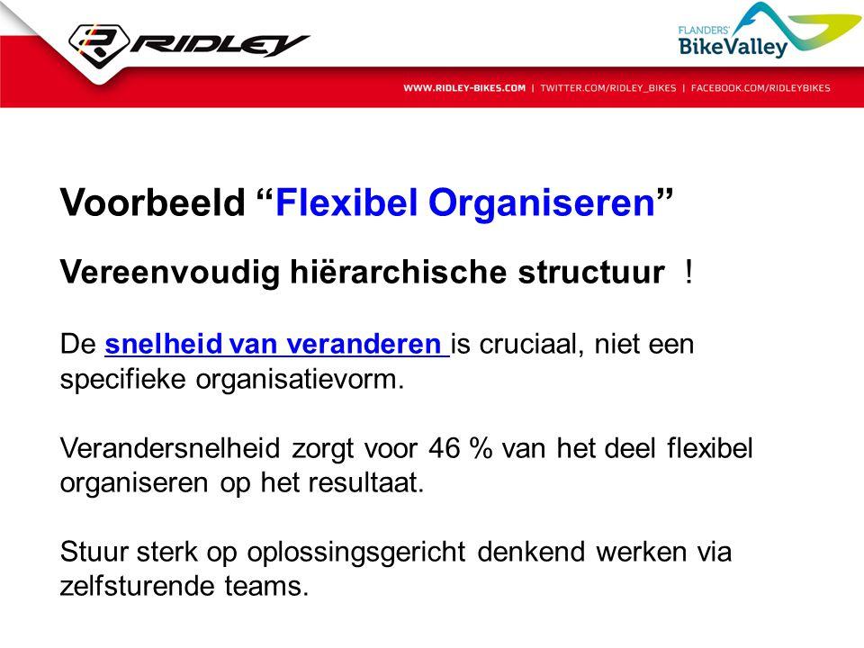 Voorbeeld Flexibel Organiseren