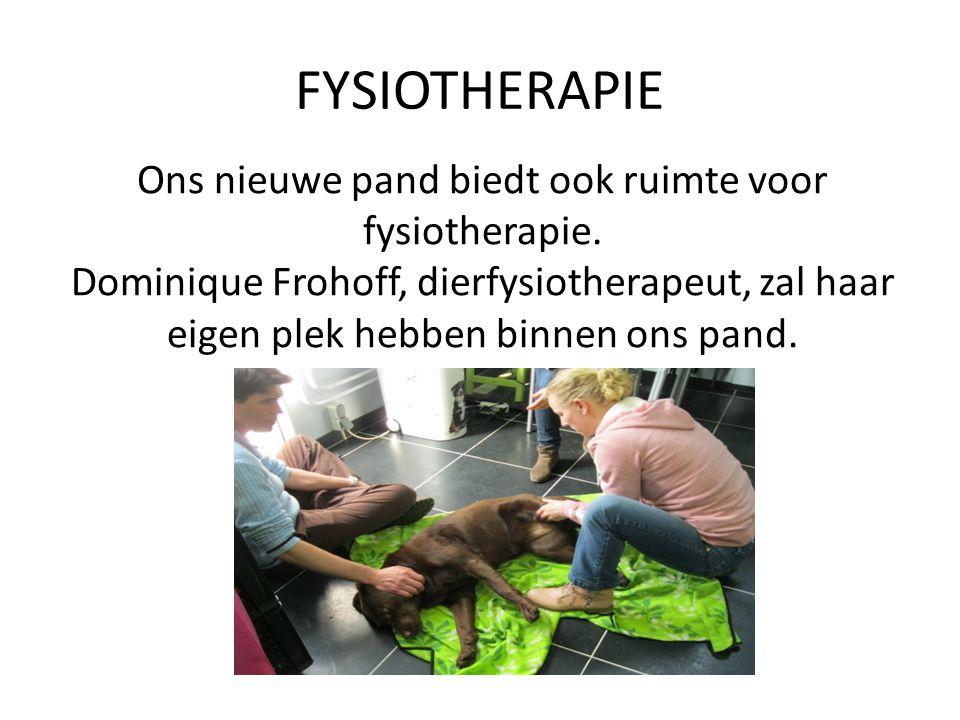 Ons nieuwe pand biedt ook ruimte voor fysiotherapie.