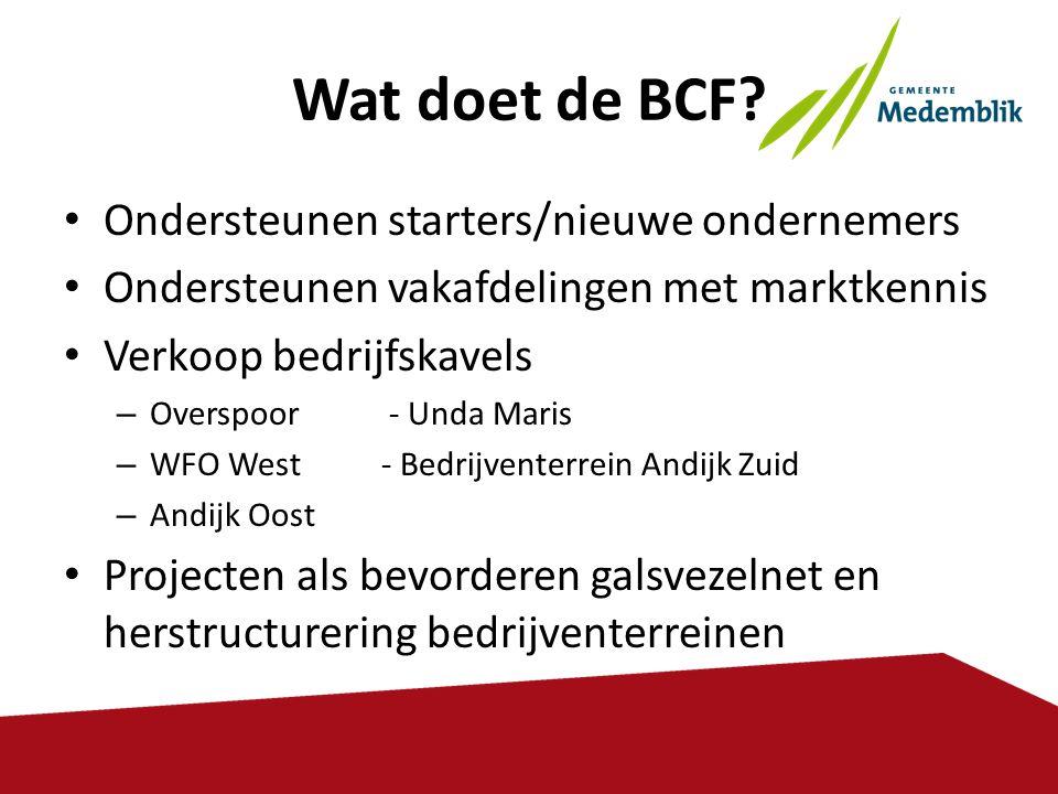 Wat doet de BCF Ondersteunen starters/nieuwe ondernemers