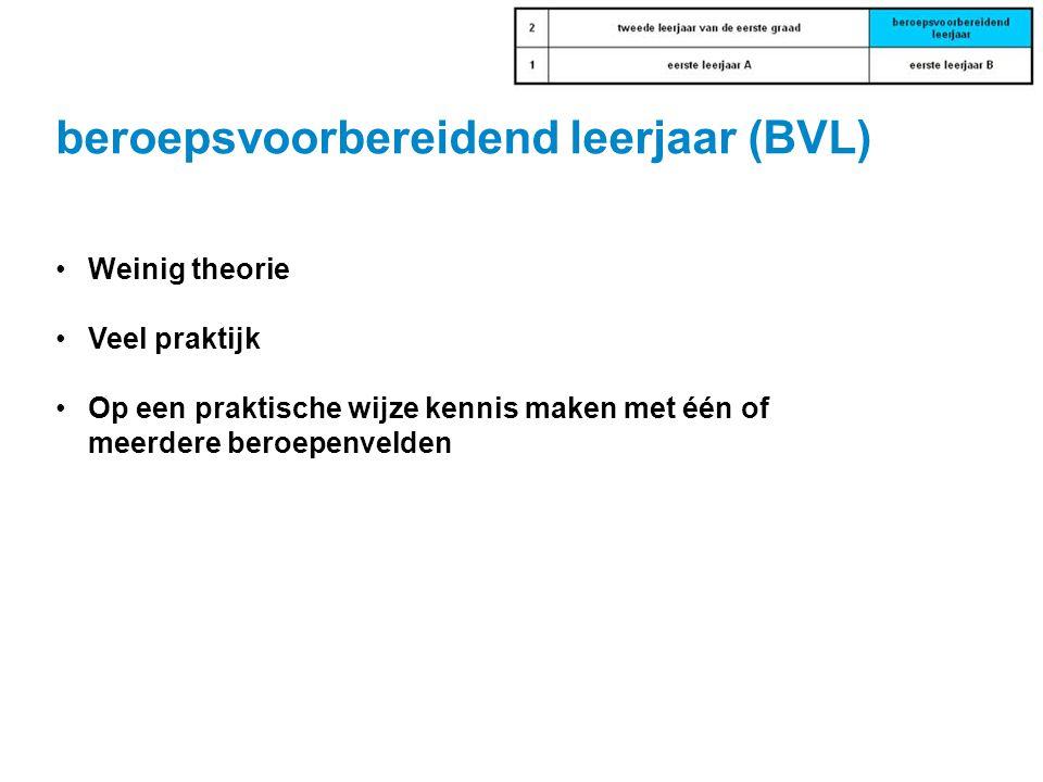 beroepsvoorbereidend leerjaar (BVL)