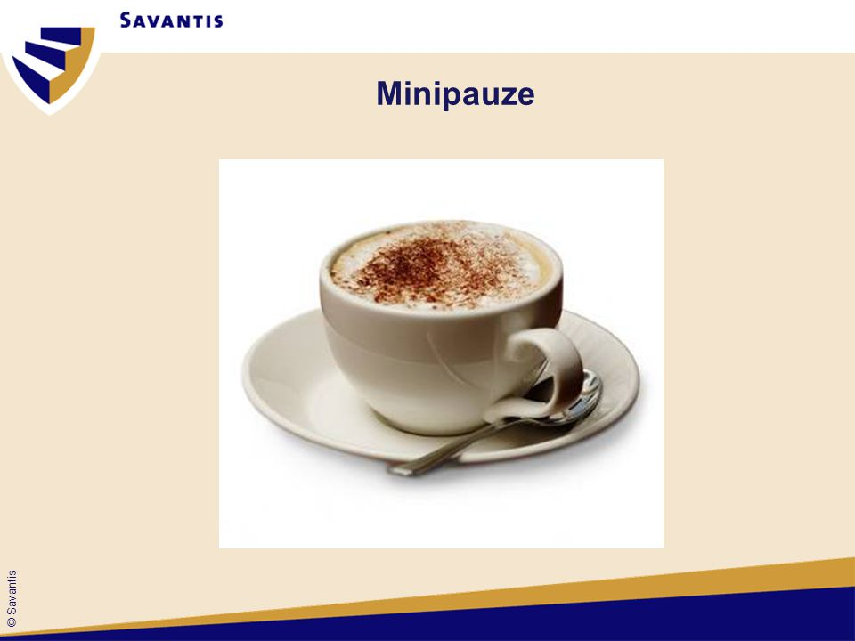 Minipauze