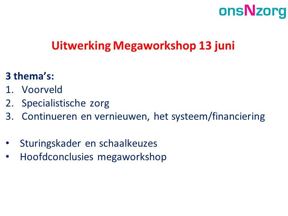 Uitwerking Megaworkshop 13 juni