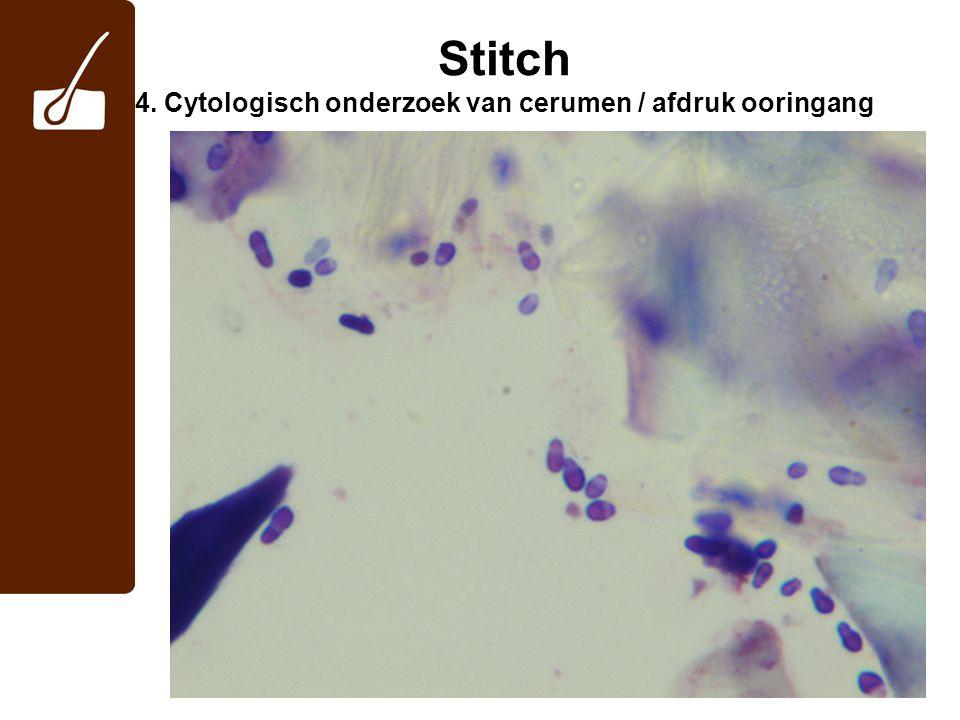 Stitch 4. Cytologisch onderzoek van cerumen / afdruk ooringang