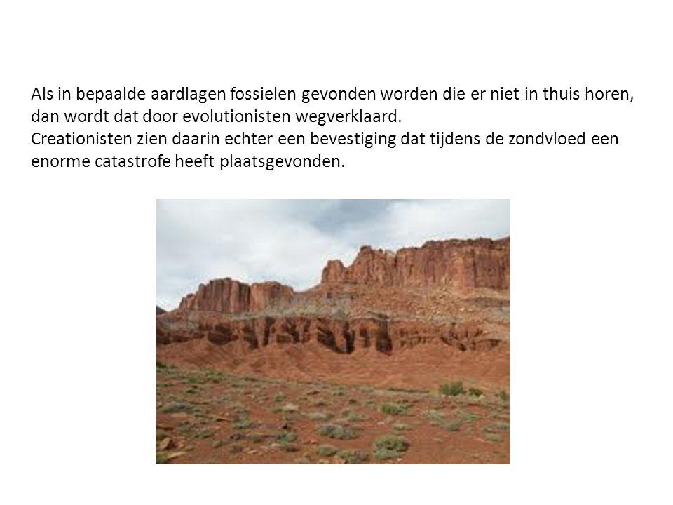 Als in bepaalde aardlagen fossielen gevonden worden die er niet in thuis horen, dan wordt dat door evolutionisten wegverklaard.