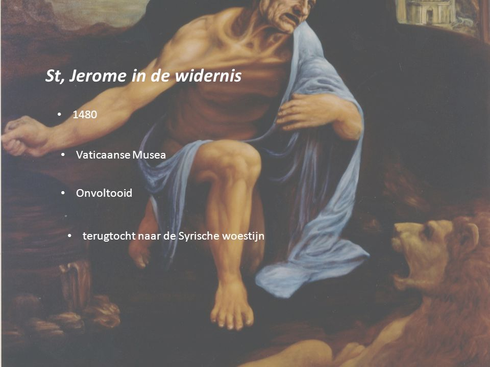 St, Jerome in de widernis