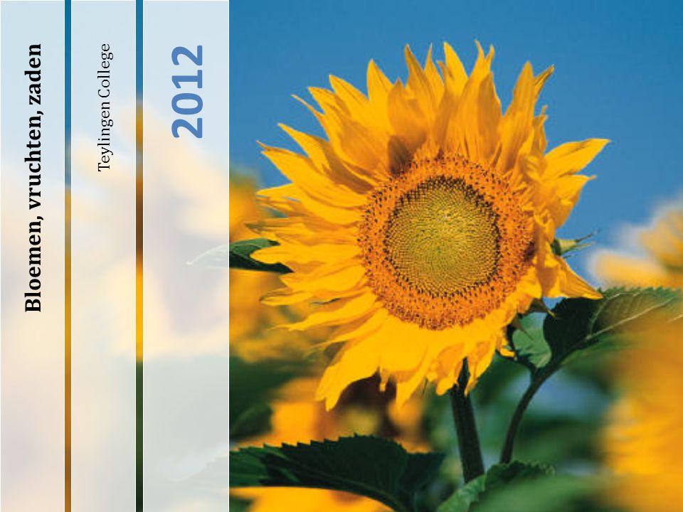 Teylingen College 2012 Bloemen, vruchten, zaden