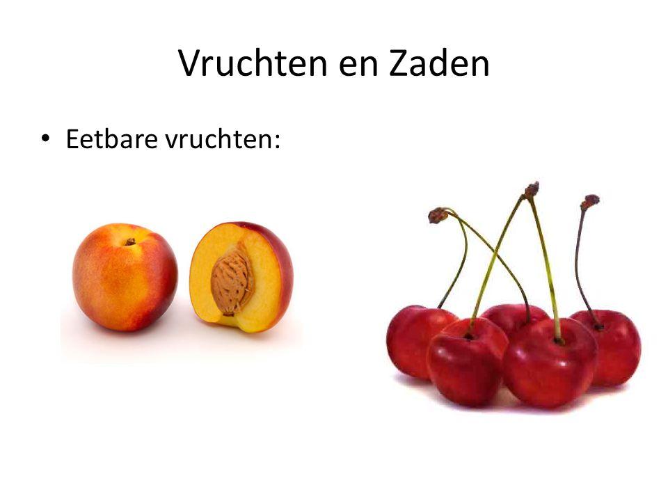 Vruchten en Zaden Eetbare vruchten: Perzik, Kers