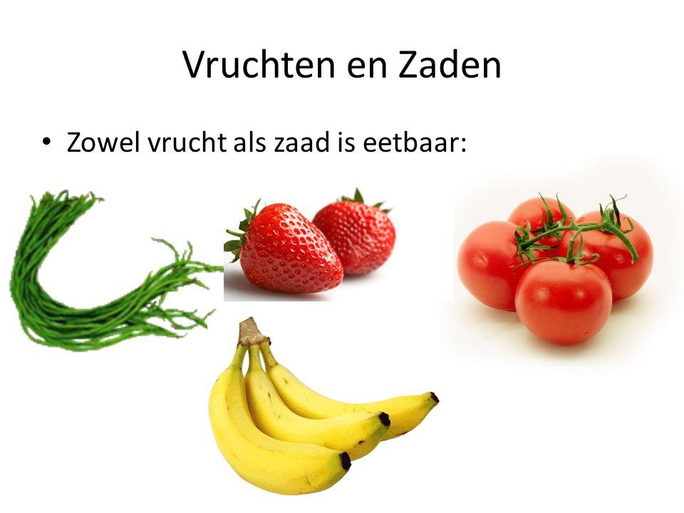 Vruchten en Zaden Zowel vrucht als zaad is eetbaar: