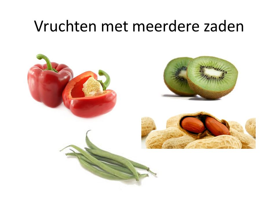 Vruchten met meerdere zaden