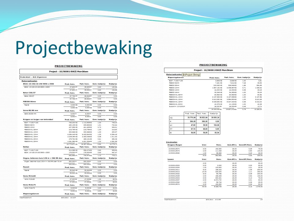 Projectbewaking