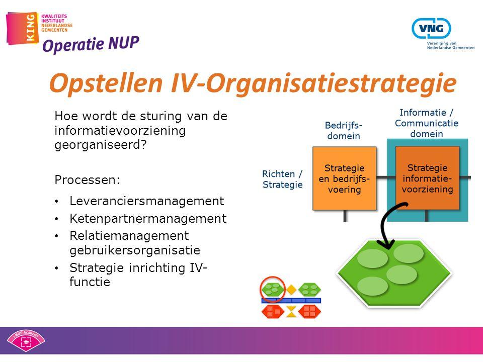 Opstellen IV-Organisatiestrategie