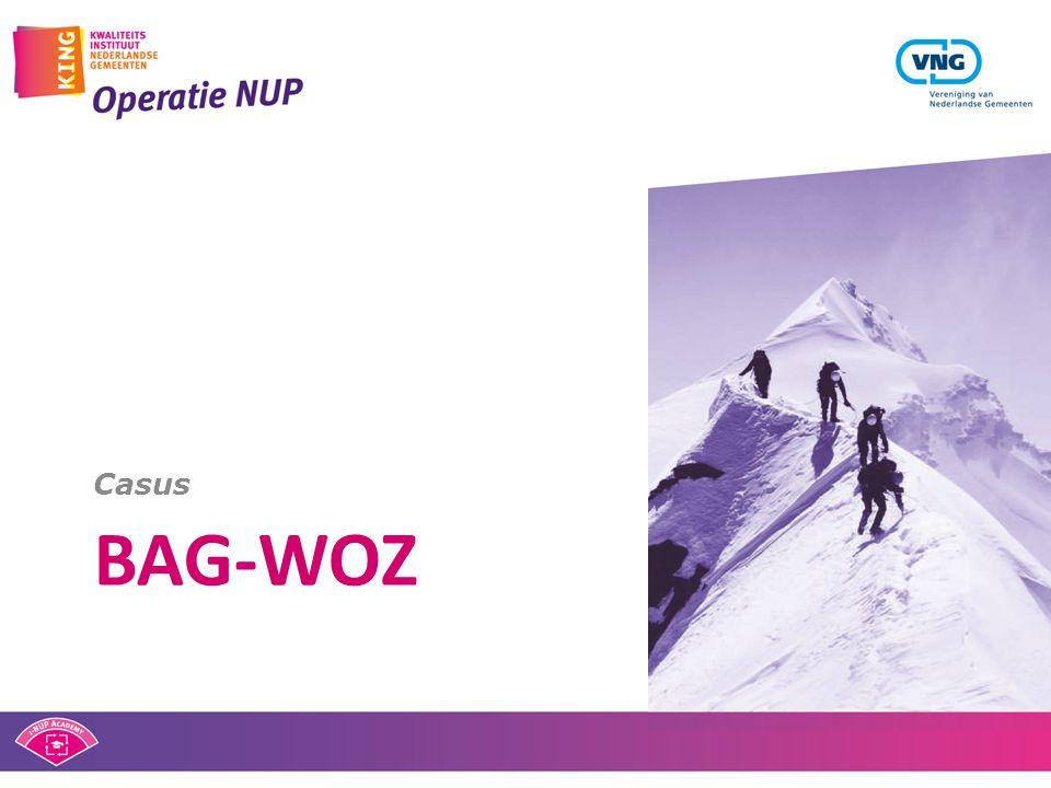 Casus bag-woz