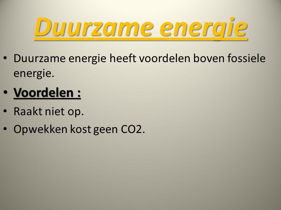Duurzame energie Voordelen :