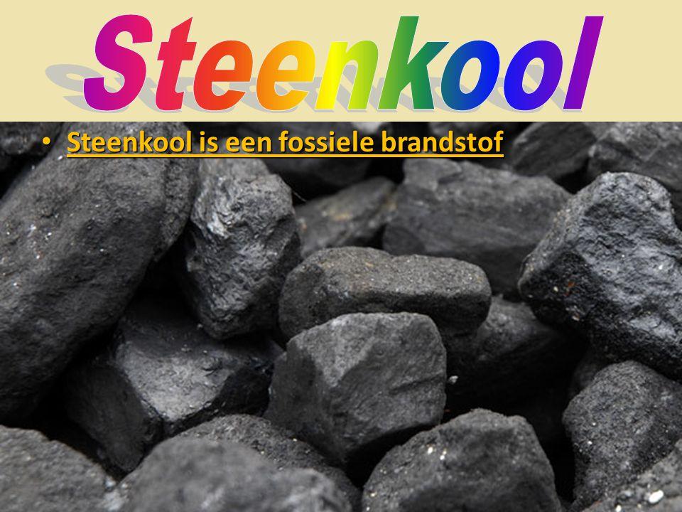 Steenkool Steenkool is een fossiele brandstof