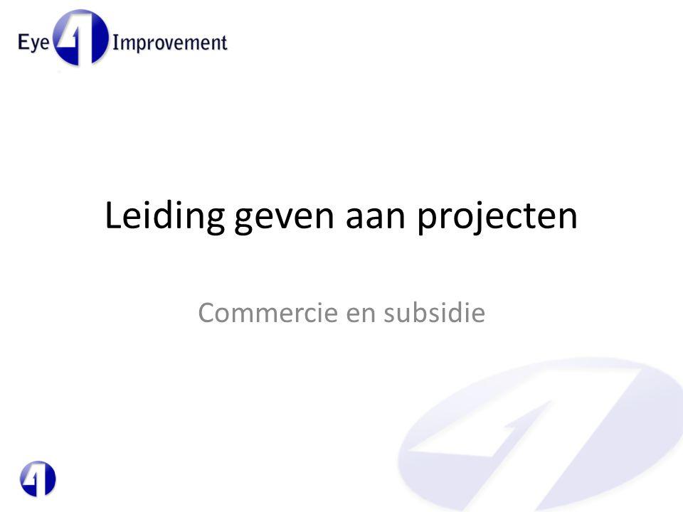 Leiding geven aan projecten