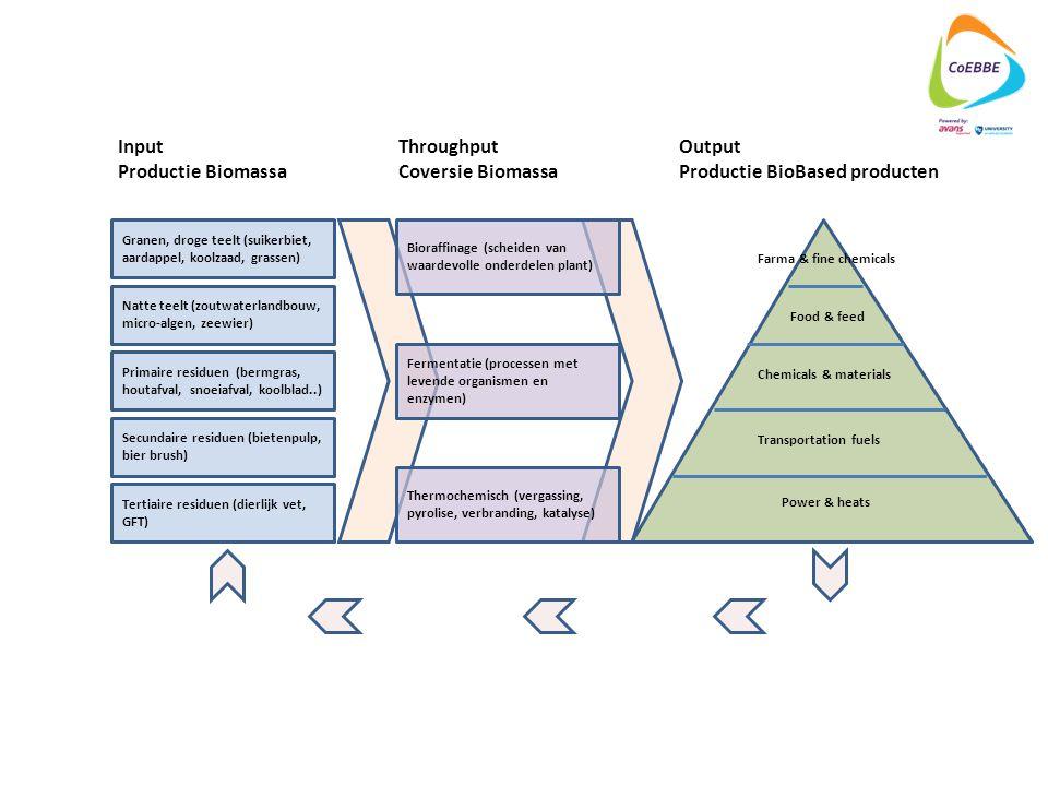 Productie BioBased producten