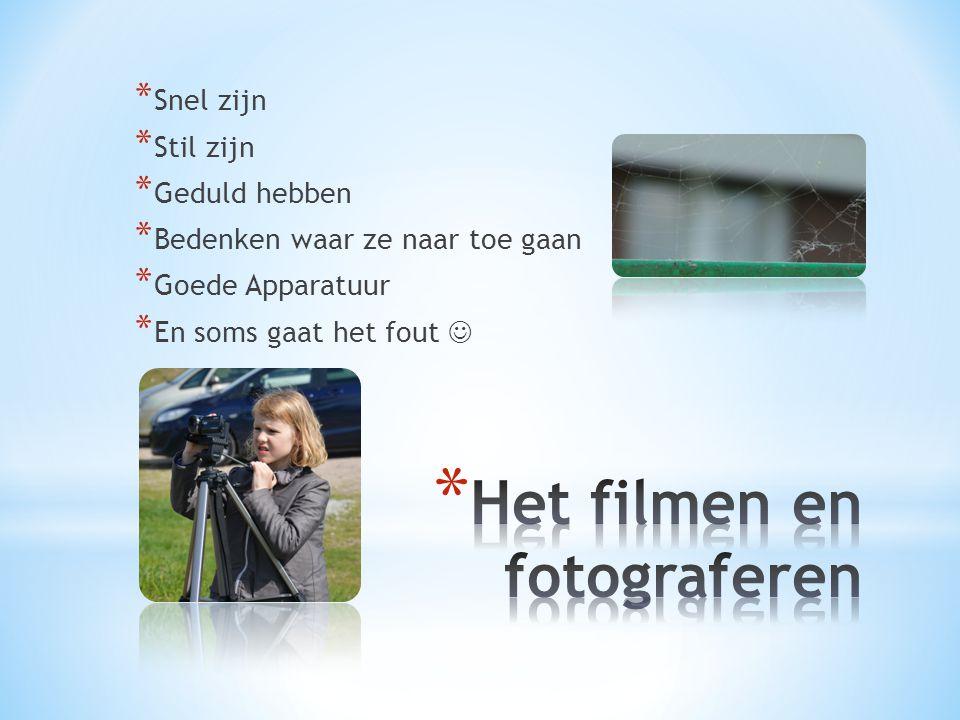 Het filmen en fotograferen