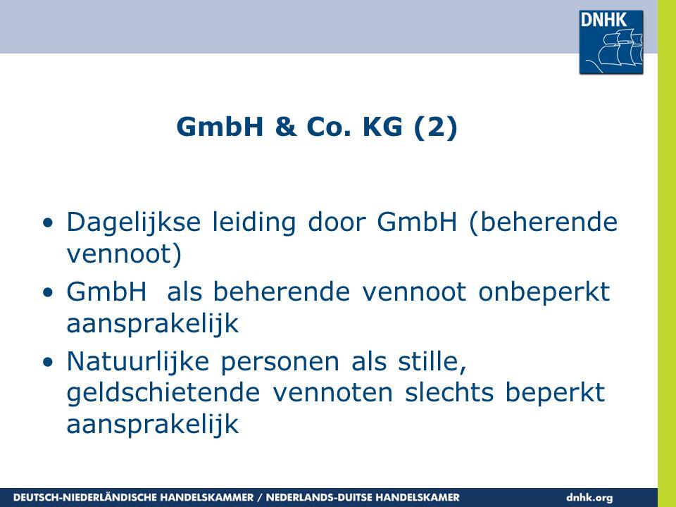 Dagelijkse leiding door GmbH (beherende vennoot)