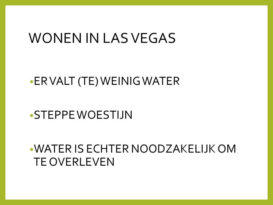WONEN IN LAS VEGAS ER VALT (TE) WEINIG WATER STEPPE WOESTIJN