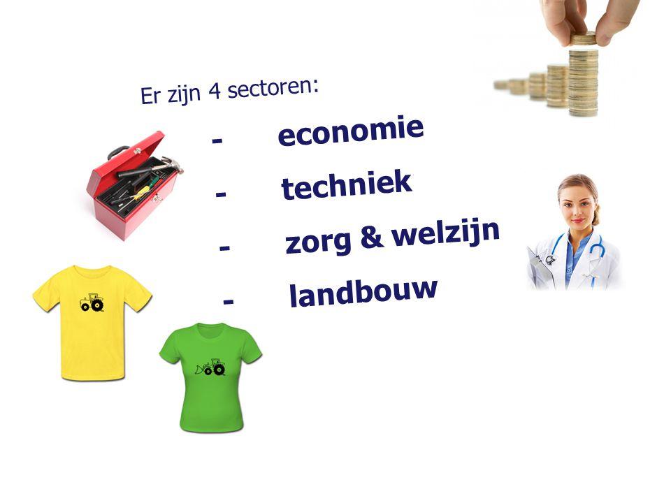 Er zijn 4 sectoren: - economie - techniek - zorg & welzijn - landbouw