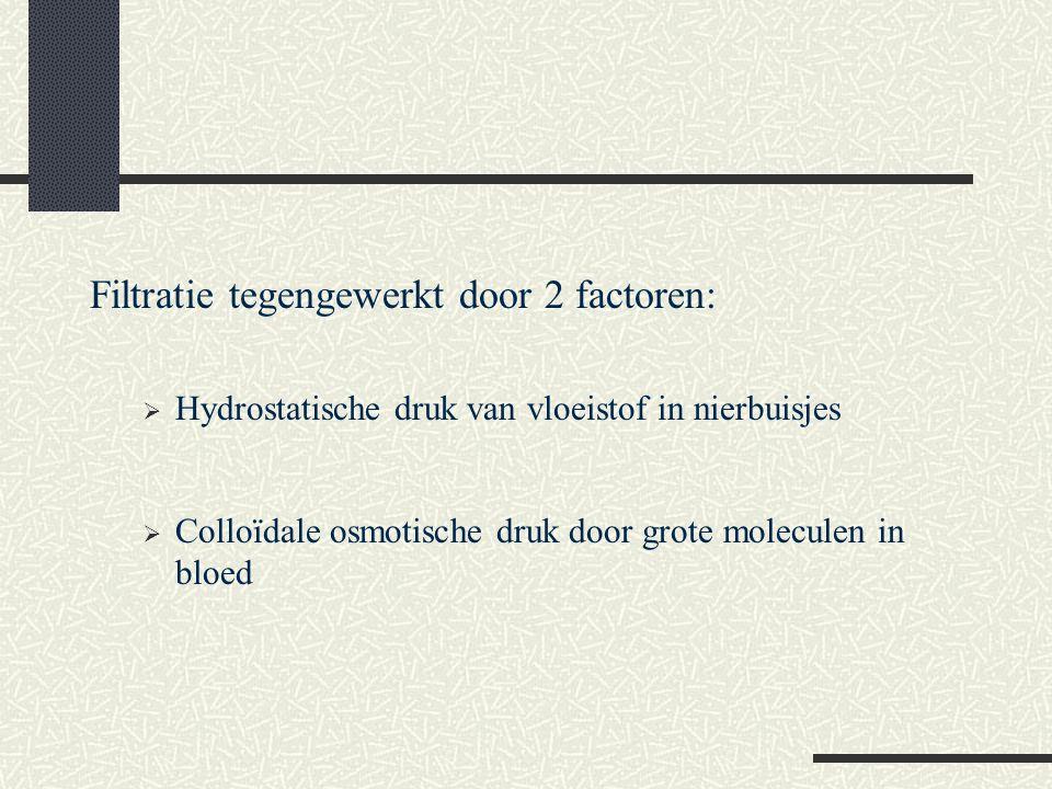 Filtratie tegengewerkt door 2 factoren: