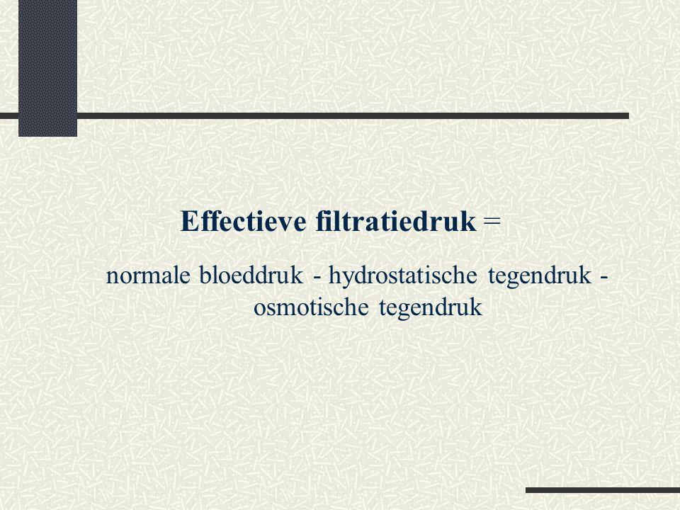 Effectieve filtratiedruk =