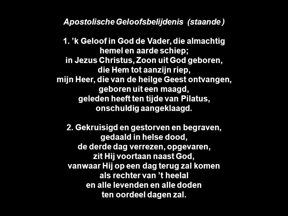 Apostolische Geloofsbelijdenis (staande )
