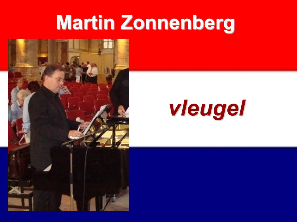 Martin Zonnenberg vleugel