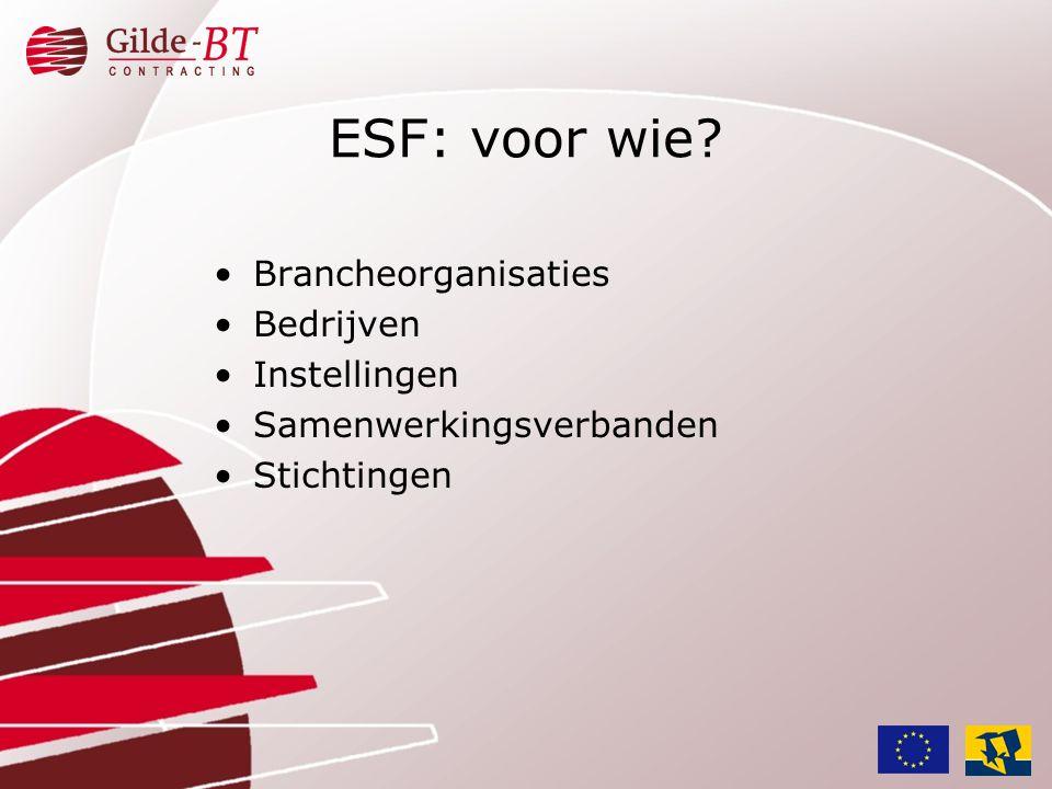 ESF: voor wie Brancheorganisaties Bedrijven Instellingen
