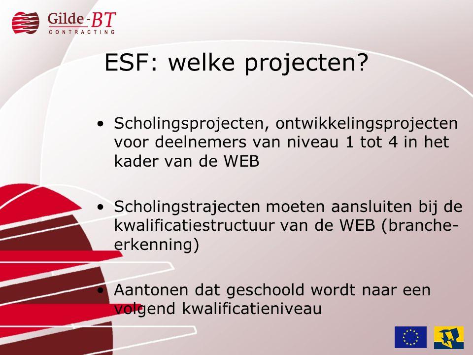 ESF: welke projecten Scholingsprojecten, ontwikkelingsprojecten voor deelnemers van niveau 1 tot 4 in het kader van de WEB.