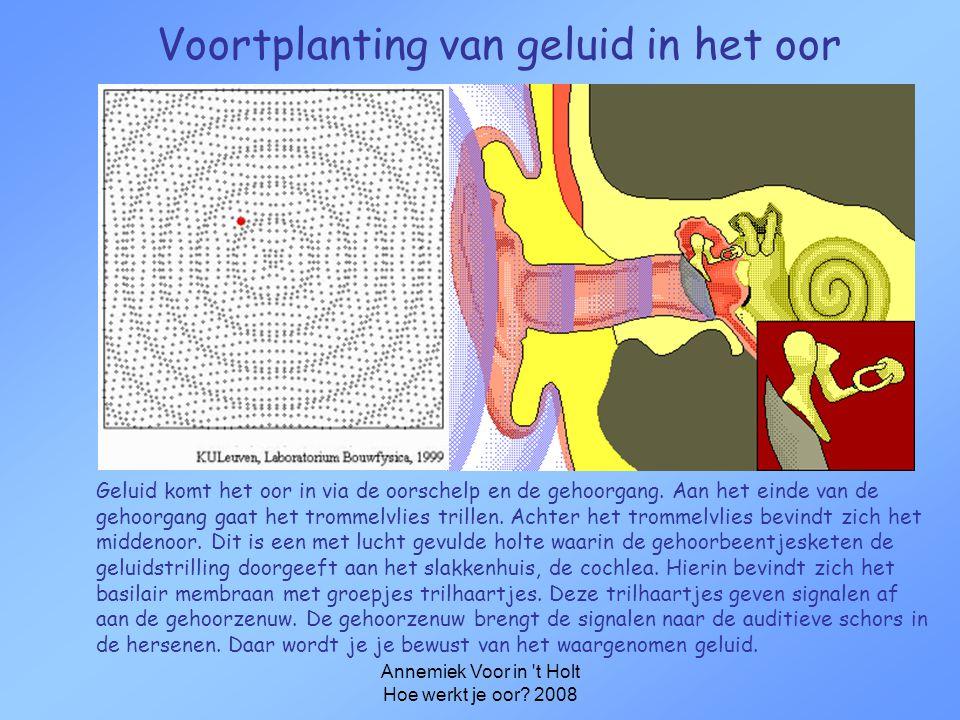 Voortplanting van geluid in het oor