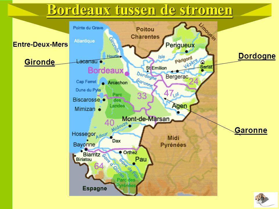 Bordeaux tussen de stromen