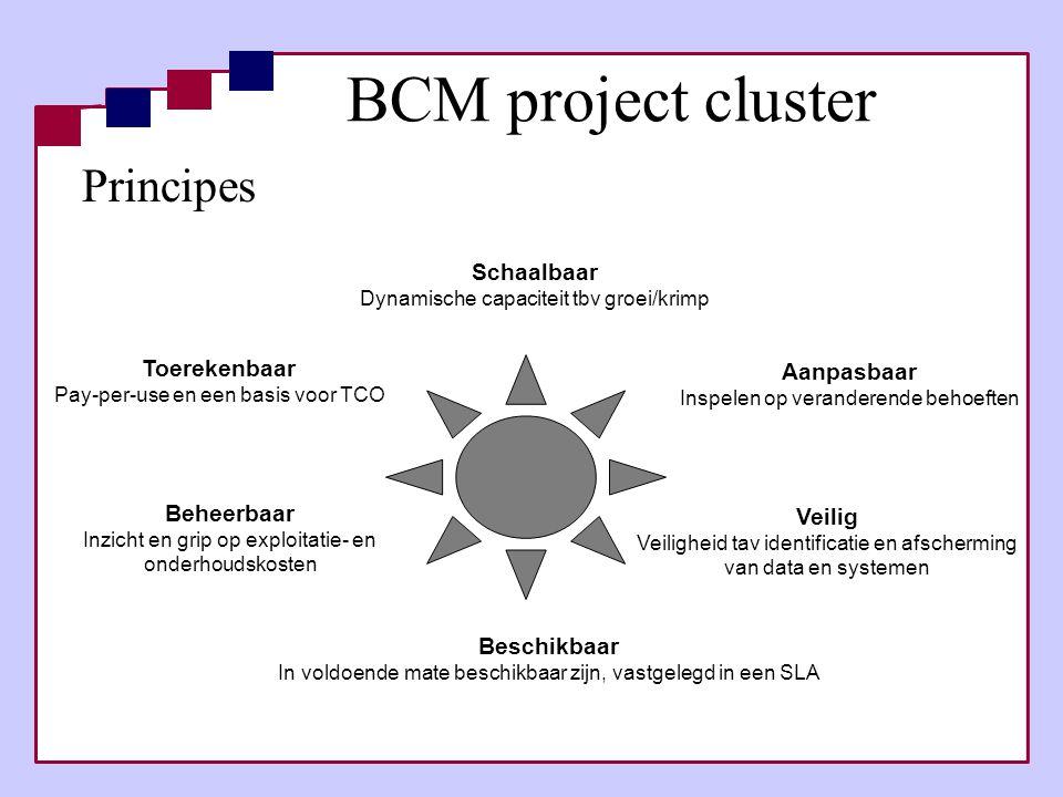 BCM project cluster Principes Schaalbaar Toerekenbaar Aanpasbaar